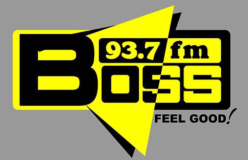 logo1boss